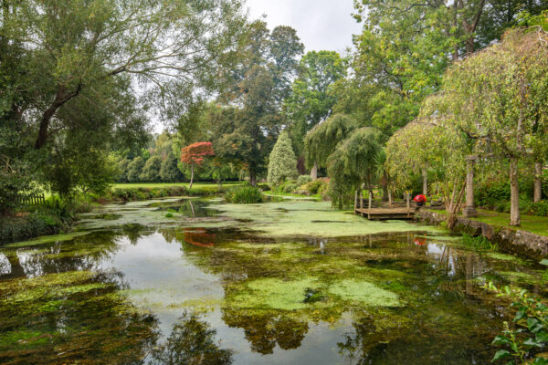 Light and spacious single storey home in Pilton